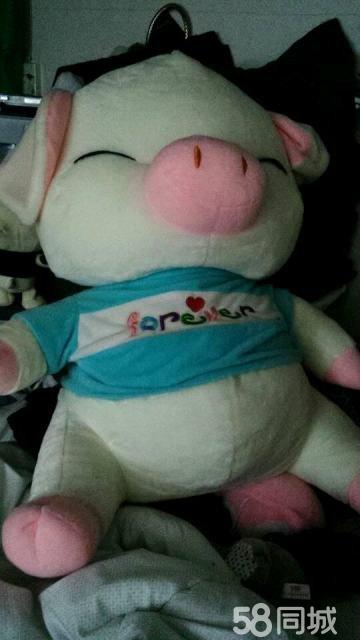 【图】超可爱的小猪布娃娃