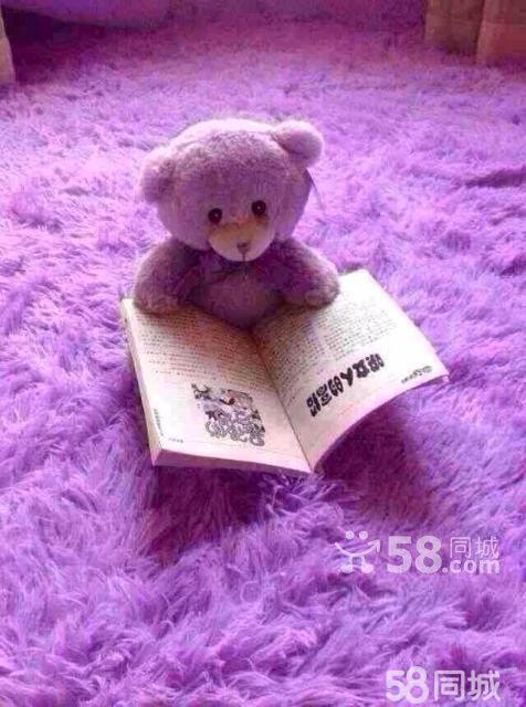 手机壁纸图片可爱小熊