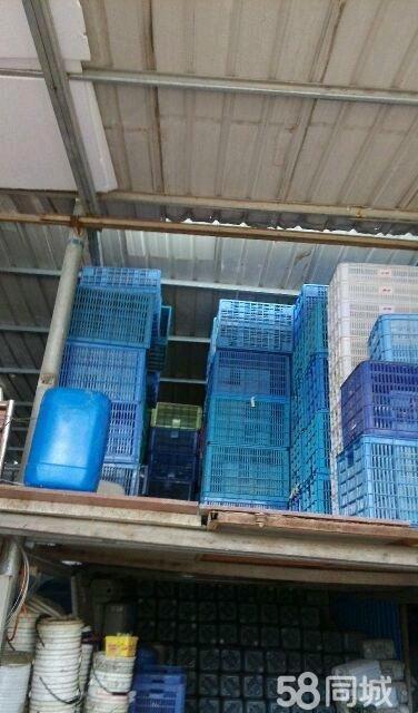 【图】厦门漳州出售塑料框周转框胶水桶铁桶吨桶立方