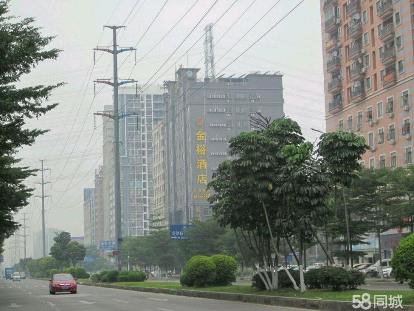 (出售) 滨海新区,未来东莞中心.长安新区政府附近,铂尔曼,大润发