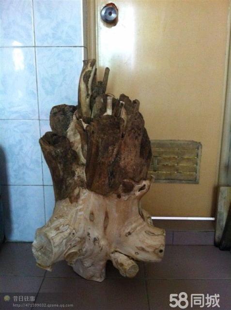 150多年的沉香树头