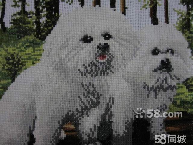 【图】纯成品十字绣台账可爱熊猫狗-鹿城江手工图纸发图片