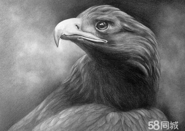 简单动物素描画大全 动物素描画图片大全 动物素描画大图片大全图片