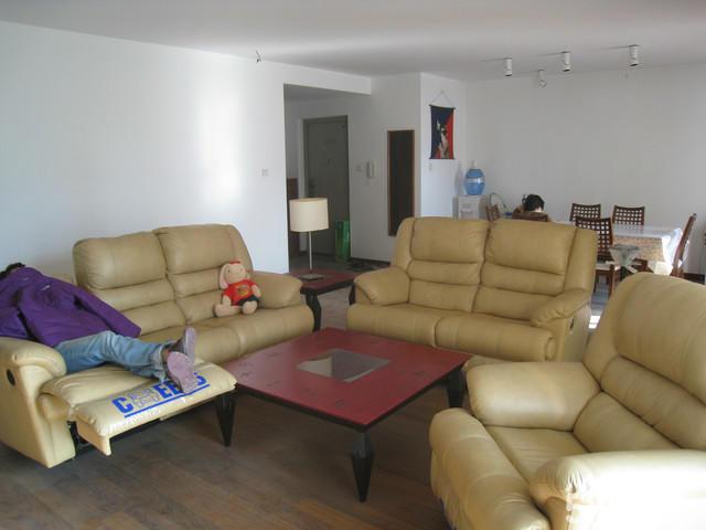 【图】芝华士真皮沙发