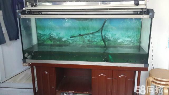 鱼缸氧气泵安装图片图片