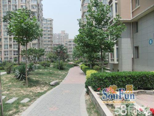 (出售) 距万达广场300米 豪景丽园小高层【一楼带小院】小区好位图片