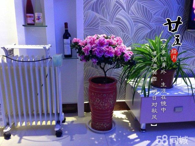 【图】长住上海,涟水状元府精装修倾情出售中