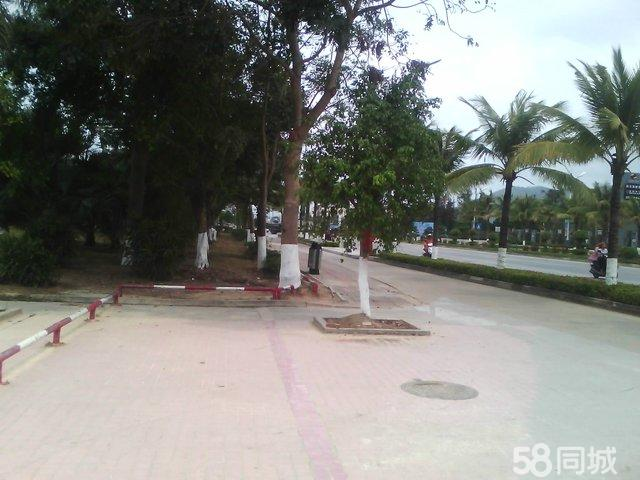 海南陵水市中心