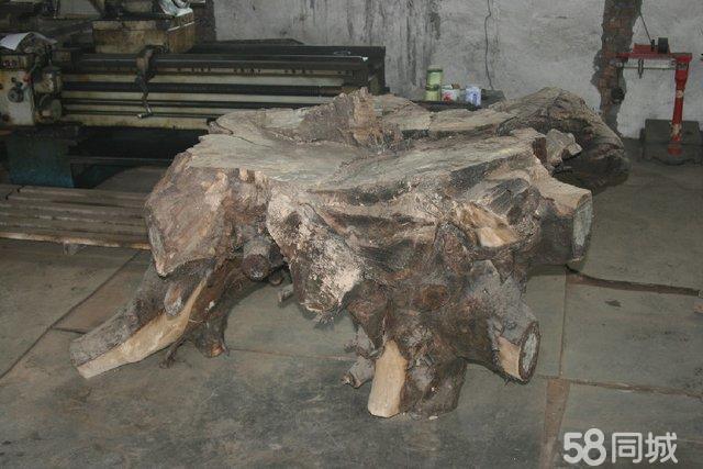实属罕见的百年山核桃树根---是制作茶海的上等天然原木材料
