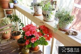 家装阳台花架图片