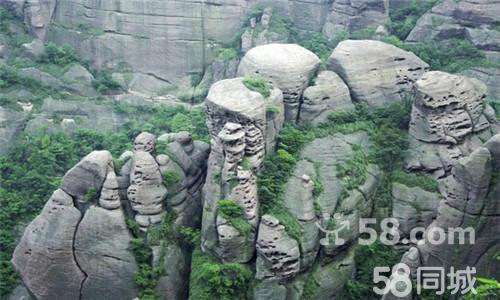 三清山风景名胜区奇松欣赏