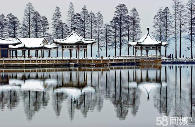 鸟岛是落雁景区范围内一处风景独特的湖中宝岛.